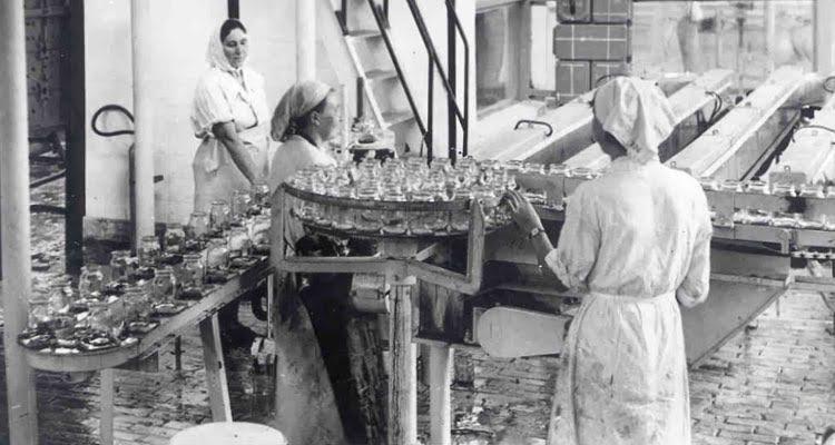 Owocowa fabryka w Rzeszowie - Alima-Gerber 4